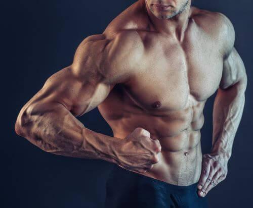 Wpływ treningu EMS na szybki rozwój mięśni